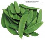 蔬菜图片(24张)