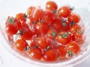 番茄西红柿图片(23张)