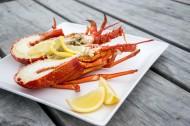 美味的大龙虾图片(10张)