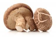 新鲜的蘑菇图片(10张)