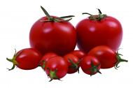 西红柿特写图片(10张)