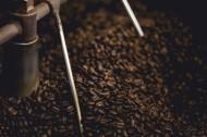 黑色的咖啡豆图片(12张)