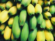 一串串的香蕉图片(10张)
