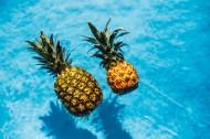在游泳池的菠萝图片(11张)