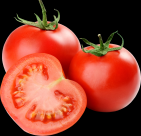 番茄透明背景PNG图片(16张)