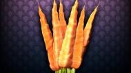 营养胡萝卜图片(20张)