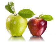 色彩鲜艳的苹果图片(15张)