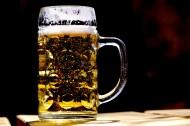 玻璃杯中的啤酒图片(16张)