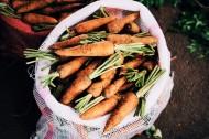 新鲜的胡萝卜图片(11张)