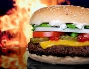 可口的汉堡包图片(13张)