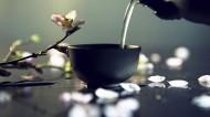 清茶图片(10张)