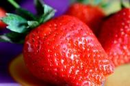 微距草莓图片(6张)