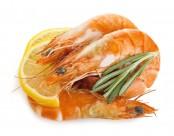诱人的虾图片(13张)