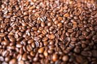醇香的咖啡豆图片(12张)