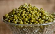 清凉解暑的绿豆图片(11张)