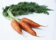 胡萝卜图片(14张)