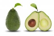 新鲜的木瓜图片(12张)