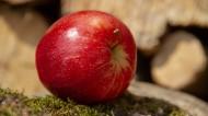 甜美的苹果图片(9张)