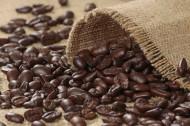 上等的咖啡豆图片(11张)