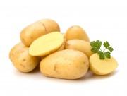 新鲜的土豆图片(14张)