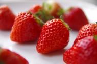 美味的草莓图片(12张)