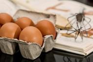 新鲜的鸡蛋图片(13张)