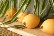 美味营养的枇杷图片(9张)