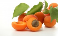杏子图片(11张)