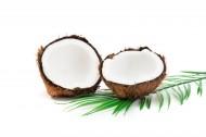 切开的夏日椰子图片(8张)