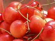 樱桃图片(20张)