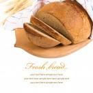 全麦面包图片(9张)