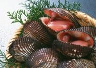 美味的海鲜食材图片(16张)