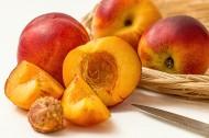 油桃图片(6张)