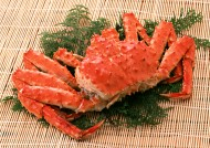 美味的大螃蟹图片(17张)