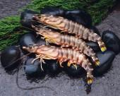 美味的大虾图片(15张)