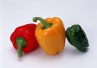 各种颜色的辣椒图片(15张)