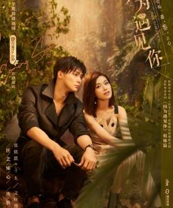 张铭恩文咏珊《只为遇见你》海报图片