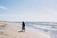 在海边的背影图片(12张)