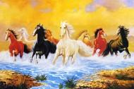动物无框油画图片(12张)