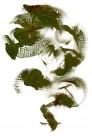 抽象毛笔刷痕图片(50张)