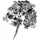 抽象花饰图案图片(18张)