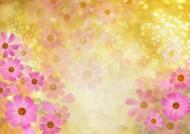 梦幻花朵图片(54张)