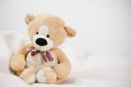 玩具熊图片(7张)