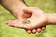 情侣戒指图片(15张)