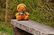 泰迪熊玩具图片(12张)