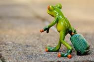 可爱的青蛙玩具图片(12张)