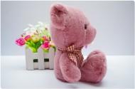 泰迪熊公仔图片(18张)