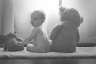 可爱的泰迪熊图片(11张)