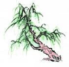 水墨柳树图片(11张)