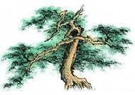水墨松树图片(69张)